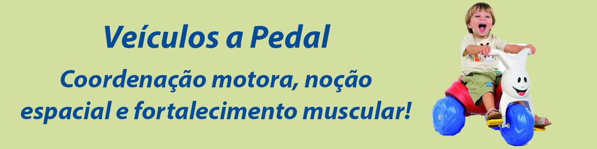 Veículos a Pedal / Triciclos